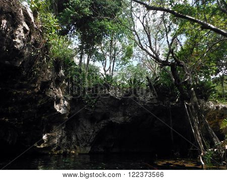 The Mexican natural limestone sinkhole Gran Cenote in it's foresty surroundings near the city Tulum in the Yucatán peninsula.