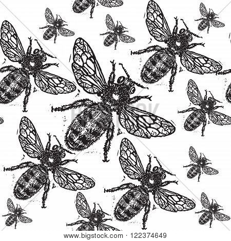 Black engraved bee on white background. Engraved pattern