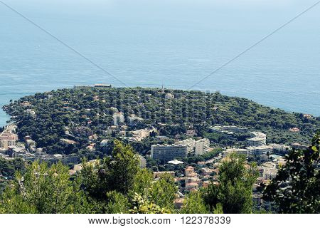 Peninsula With Trees And Town