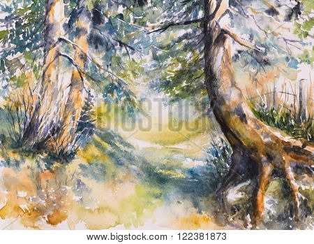 Pathway in forest. Picture created with watercolors
