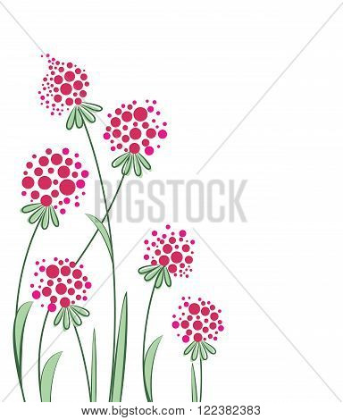 Vector flowers in the garden on a white background