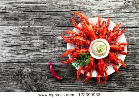 Boiled red crayfishes with sauce of grated horseradish close-up