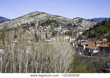 High angle view of Goynuk town with aspen trees in the foreground. Goynuk is a town and a district of Bolu Province in the Black Sea region of Turkey.