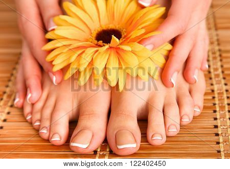 Care for beautiful woman legs on the floor.