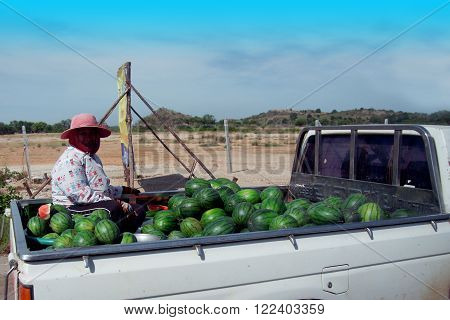 CHONBURI, THAILAND - DEC 26, 2011 : Woman and watermelon for sell on pickup truck at Chonburi, Eastern Thailand.