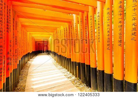 Fushimi Inari Shrine Curved Writing Torii Gates H