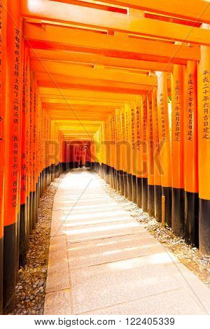 KYOTO, JAPAN - JUNE 15, 2015: Japanese text written on colorful red torii gates supports repeating at Fushimi Inari Taisha Shrine with no people present in Kyoto, Japan. Vertical copy space