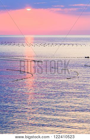 Beautiful fascinate sea sunrise with pink sky, sun track and buoys of fishing nets on water surface. Human on boat is unrecognizable.