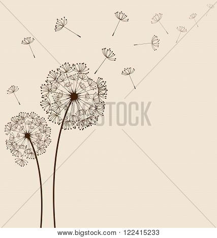 Dandelions flying on cream background vector for spring season