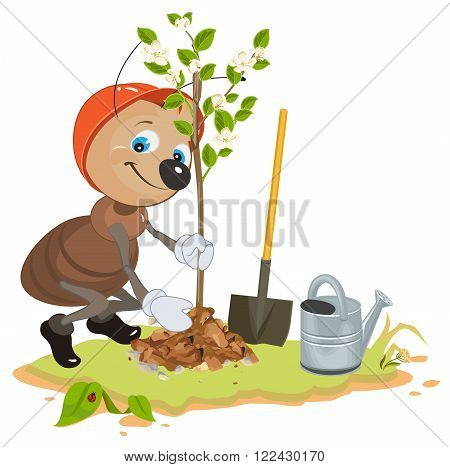 Ant Gardener planting tree. Seedling fruit tree. Apple tree sapling. Cartoon illustration in vector format