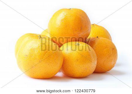 Orange, Mandarin Orange, Citrus sinensis isolated on white background
