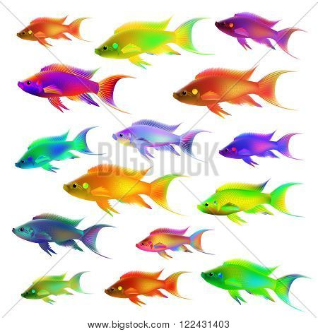 Set of fifteen colorful fish. Vector illustration