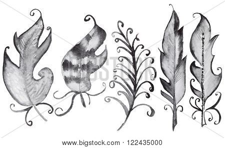 Set of watercolor black feathers in gothic style