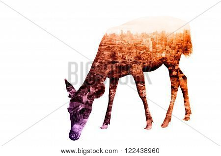 Double Exposure Of Deer With Cityscape And Building