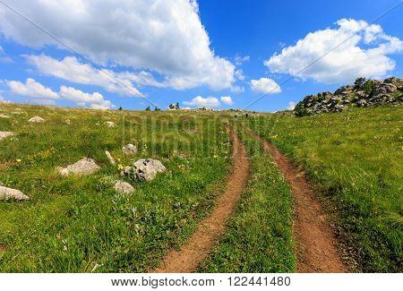 summer scene with rut road across mountain meadow