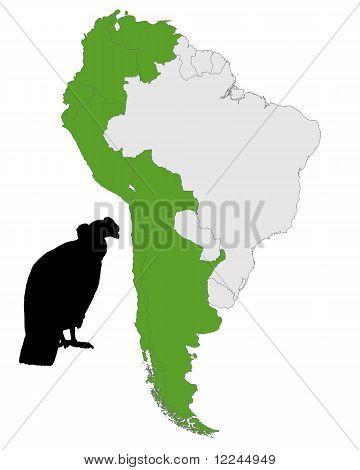 Andean Condor Distribution