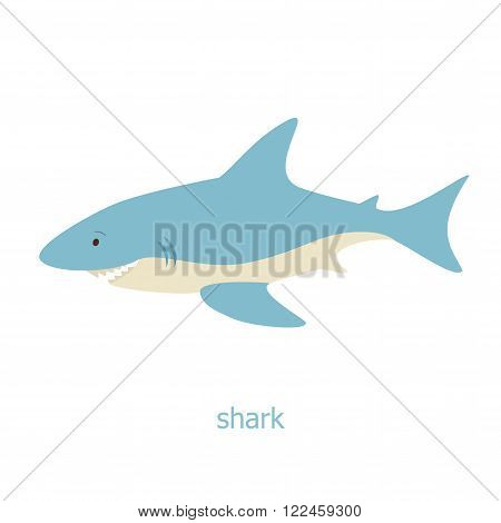 Shark cartoon character. The fish of the Australia. Wild animal. Cute shark.  Marine life.