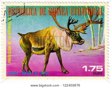 EQUATORIAL GUINEA - CIRCA 1977: a stamp printed in Equatorial Guinea shows Caribou, Rangifer Tarandus, Wild Animal of the North America, circa 1977