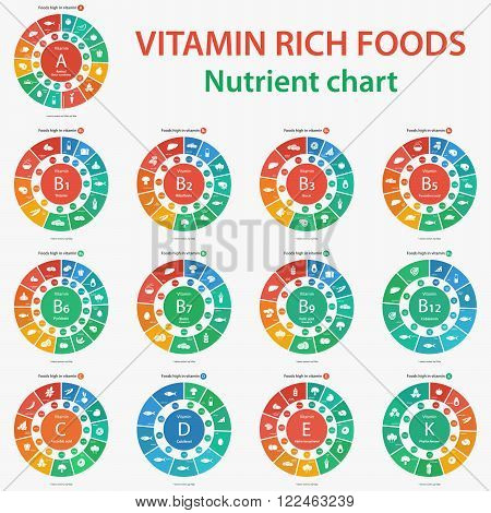 Vitamin rich foods. Nutrient chart. Foods high in vitamins. Vector illustration diagram chart set of vitamins A, B1, B2, B3, B5, B6, B7, B9, B12, C, D, E, K