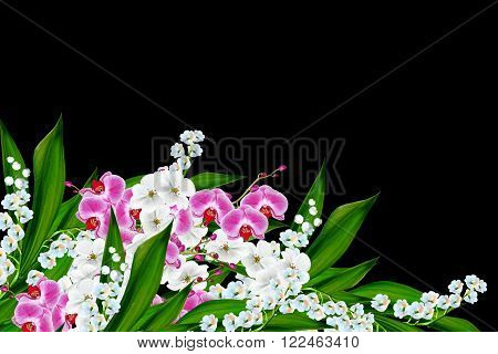 flowers lily of the valley. Flowers of lilies of the valley and orchid isolated on a black background.