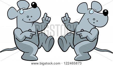 Rat Dancing