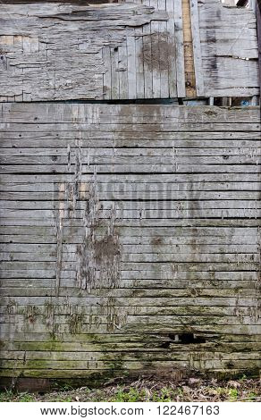 Texture of old wood planks from horisontal