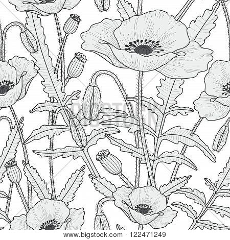 Elegant floral seamless pattern with beautiful poppy flowers leaves buds and poppy heads. Black and white flourish background. Thin line style.
