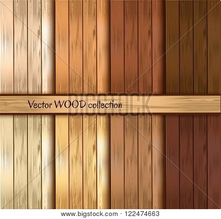 wooden pattern collection. Variuos types of wood. Vector illustration.