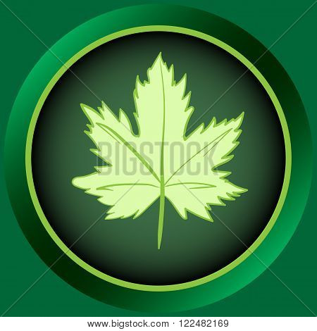 Icon the button of green color with a leaf