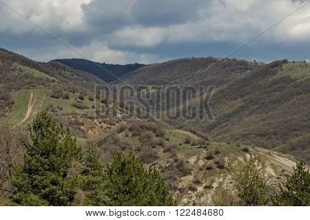 Springtime panorama landscape with pine or pinus and deciduous forest in Murgash mountain, Bulgaria