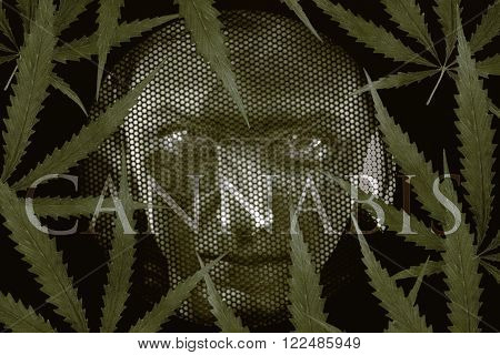 Human looking through grates and cannabis leaves. Addiction and jail concept.