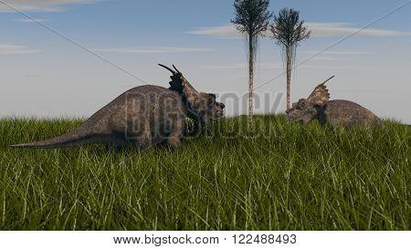 achelousauruses in conflict