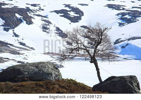 Spring valley landscape with mountains and melting snow, Norway