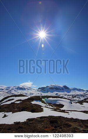 Spring Valley Landscape