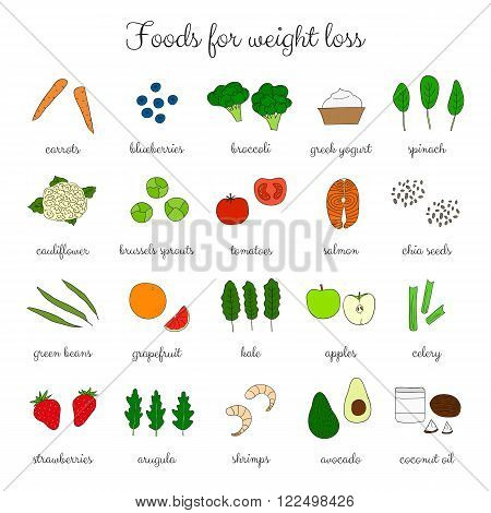 Foods for weight loss. Low fat diet concept. Hand drawn products. Broccoli, salmon, shrimps, arugula, cauliflower, avocado, coconut oil, apple, spinach, yougurt, carrot, tomatoes, celery, strawberry.
