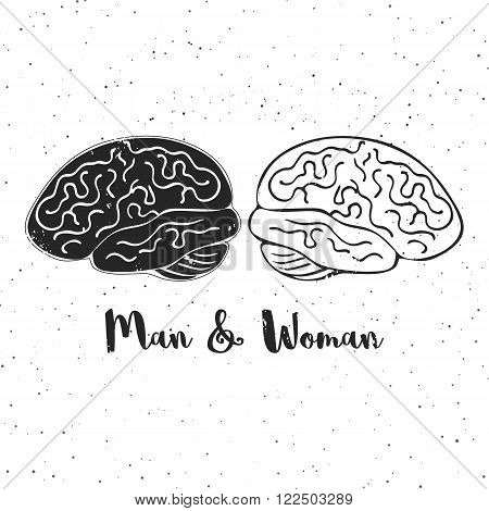 Vector illustration of man and woman brains. These are iconic representations of gender psuchology, creativity, ideas, inspiration, thoughts, memory and education. Eps10.