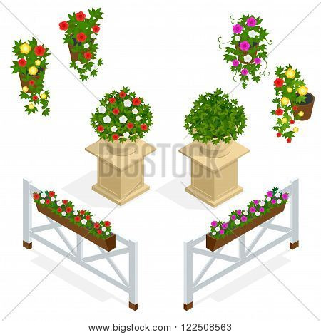 Flowers icon. Design elements for the cafe. Isometric vector flowers elements for landscape design. Flowers background. Flower isometric