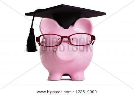 Student college graduate Piggy Bank isolated on white background, front view