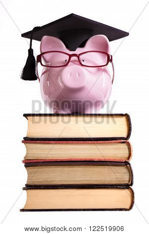 Student college graduate Piggy Bank isolated on white background front view