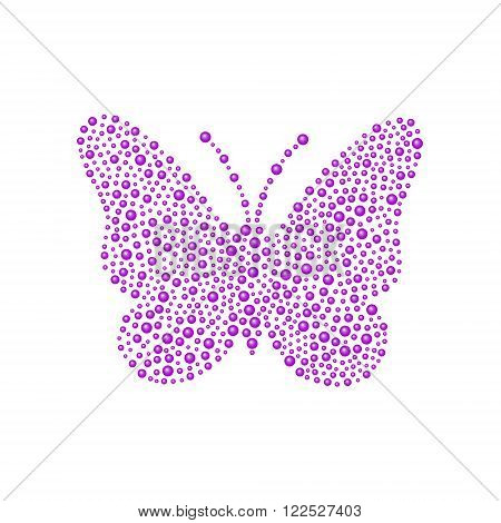Butterfly in purple design on white background