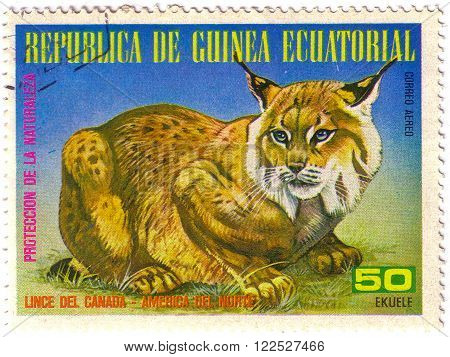 EQUATORIAL GUINEA - CIRCA 1977: A Stamp sheet printed in EQUATORIAL GUINEA shows a collection of Wild animals of the North America, series, circa 1977