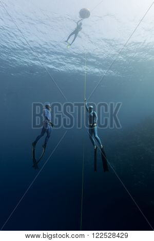 Two free divers ascending along the rope in open sea