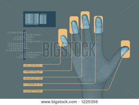 Biometrie 3 v1