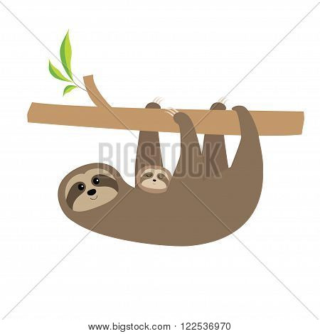 Sloth mother with baby. Cute cartoon character. Tree branch Wild joungle animal collection. Isolated. White background. Flat design Vector illustration
