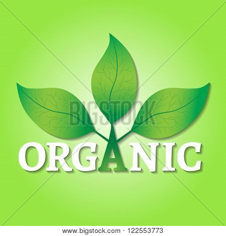 Organic concept or logo. Green leaves on a tree with organic text on a green background.