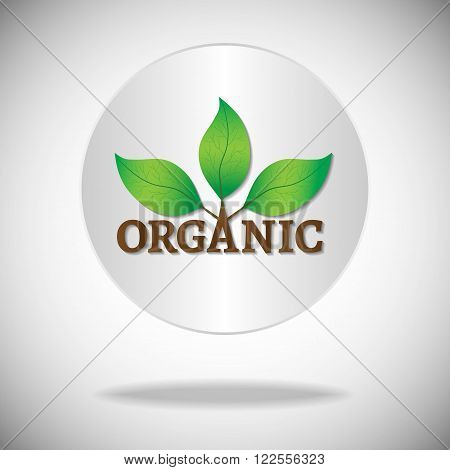 Organic icon or logo. Green leaves on a tree with organic text on a white circle background.