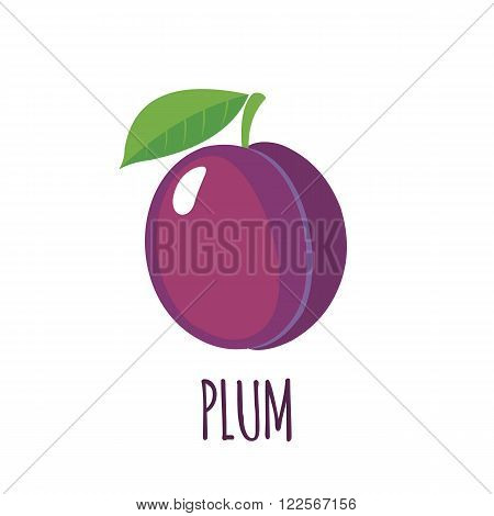 Plum in flat style. Isolated object. Vector illustration.