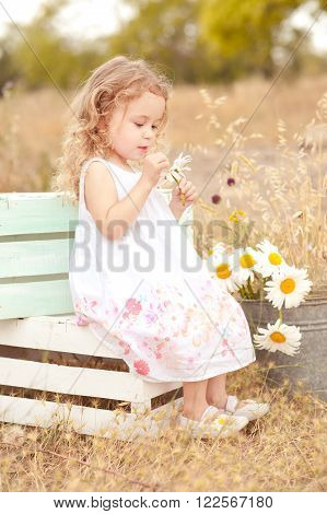 Cute little girl sitting on boxes with chamomile in meadow