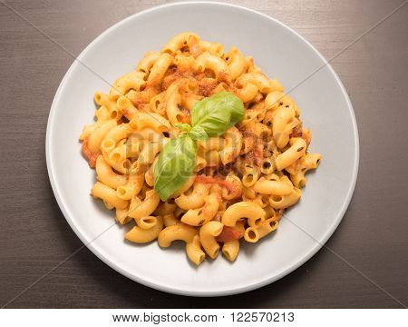 macaroni pasta garnish with basil leaves in a white plate
