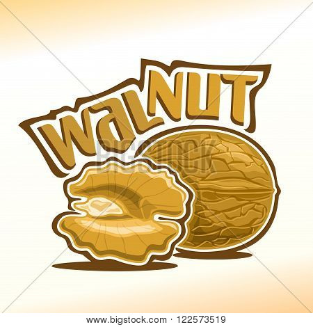 Vector illustration on the theme of the logo for walnut nuts, consisting of nut-in-shell and half of the peeled kernel of the nut